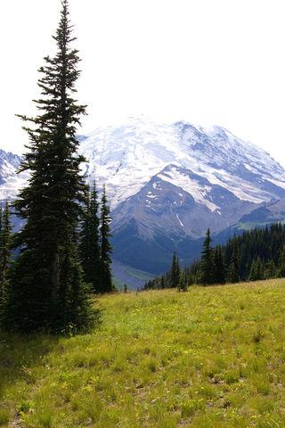 Mt.Rainer