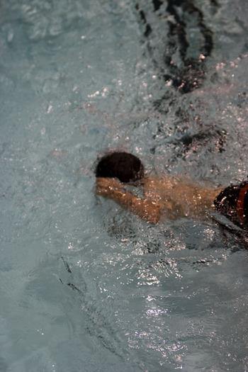 Swimmerben
